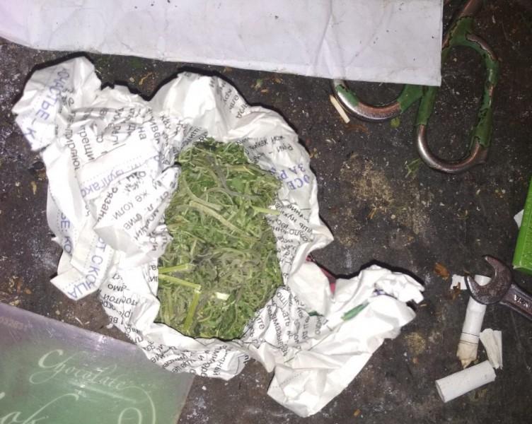 В Вышнем Волочке полицейские задержали подозреваемого в хранении растительного наркотика