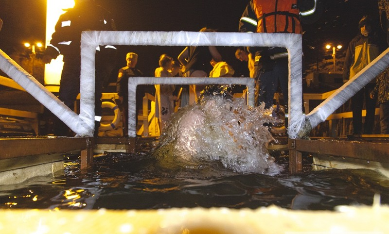 Праздник Крещения прошел в регионе без нарушений общественного порядка