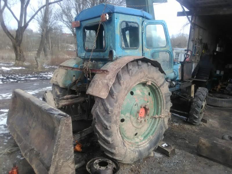 В Тверской области полицейские обнаружили незаконную рубку леса