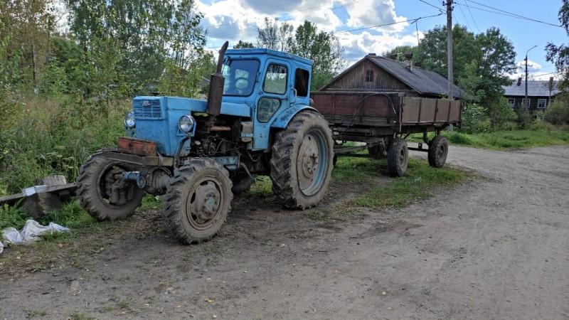 В Тверской области полицейские пресекли незаконную вырубку леса в крупном размере