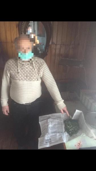 В Тверской области мужчина подозревается в незаконном хранении и культивировании растительного наркотика