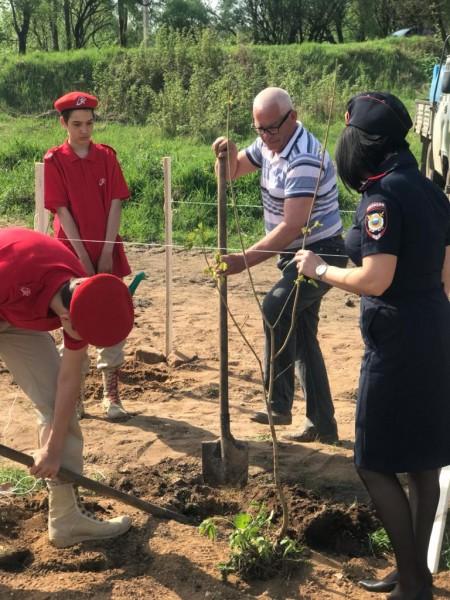 Полицейские Бологовского района приняли участие во Всероссийской акции «Сад памяти»