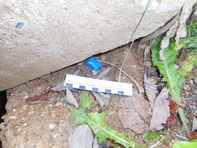 Тверские полицейские задержали злоумышленницу при попытке сбыта наркотиков